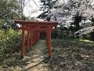 山頂と城山稲荷神社…