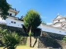 盛夏の和歌山城…