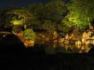 二の丸庭園ライトアップ…