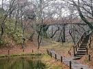 桜雲橋を見上げる…