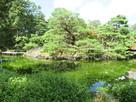 三の丸(芦城公園)庭園内小島