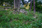 郭1南側の石積