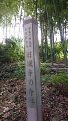 榎下城(旧城寺)の寺林…