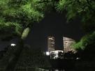 夜間高松城内から見えるビル…