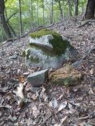 南郭4に落ちていた石
