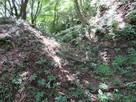千畳敷跡から本丸にある畝状堅堀…