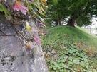 表御門石垣と土塁…