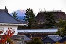 本丸天守台と富士…