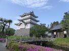 忍城御三階櫓と水堀を彩るツツジ…