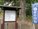 糠部神社の御神木…