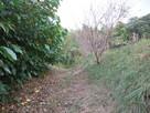 甘棠院西側の堀…
