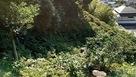 城址北側の崖