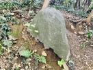 弁財採石跡地 残念石…