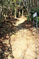 本丸南側登山道…