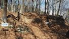 本城跡と石垣跡…