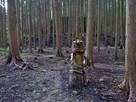 松永屋敷の武者木像と連続する切岸