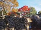 後曲輪石垣と紅葉…