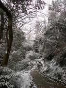 登城道(冬)