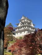 紅葉とお城