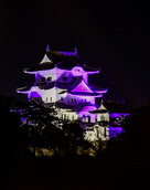 パープルリボンライトアップ伊賀上野城…