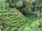 本丸土塁と堀
