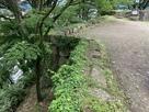 茶壷櫓跡から月見櫓跡の間の横矢…