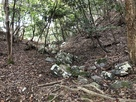 堀切と崩落した石垣石…