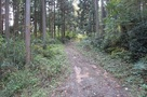 林道天王線本線と支線の合流点…