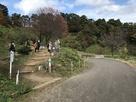 舗装道路から米蔵経由本丸への登城口…