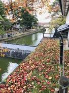 辰巳櫓より内堀と土橋…