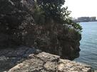 琉球石灰岩の岸壁…