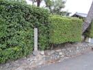 芥川城址の石碑…