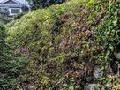 堀跡の石垣