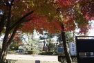 高山右近像と紅葉…