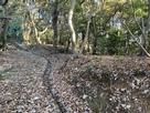 金ヶ崎城との間にある曲輪群