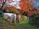 紅葉と空堀(桜雲橋下より)…
