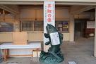 護国神社の鯉