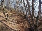 長大な竪堀(北東稜線)…