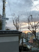 山崎城跡のある安泰寺問から初日の出…