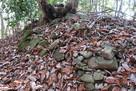 伊勢田辺城 土塁の石積み…