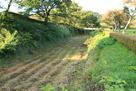 本丸南側の堀跡…