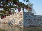 山茶花と石垣