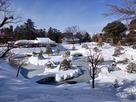 凍る玉泉院丸庭園…