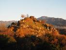 晩秋の夕方の苗木城全景…