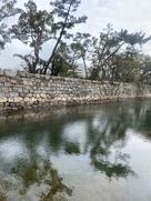 桜の馬場南面の石垣と水堀(琴電車内より撮