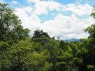 鬱蒼とした緑に覆われた夏の苗木城…