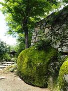 大矢倉の石垣と苔むした岩…