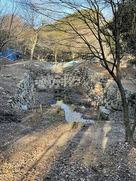 発掘調査中の大池