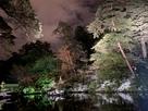【兼六園2月ライトアップ】瓢池にて…