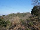 横山ハイキングコースから望む横山城…